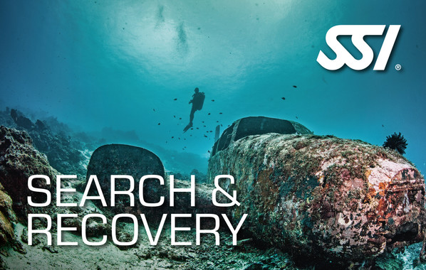 DECOSTOP SSI Search & Recovery