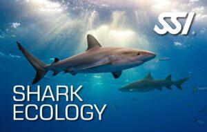 DECOSTOP SSI SHARK ECOLOGY